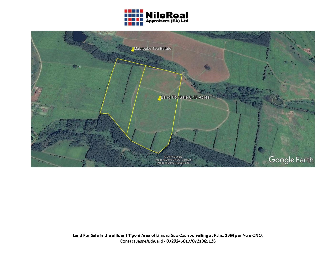 26 Acres Land For Sale In Tigoni Nilereal Appraisers